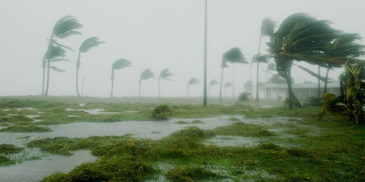 hurricanefeatureimage2